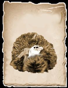 schnappschuss257